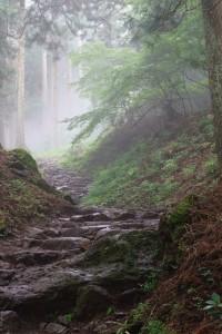 あいにくの曇り空で道中はところどころ霧がかかってました